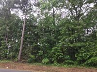 Home for sale: Lot 67 & 68 Birch Dr., Waverly Hall, GA 31831