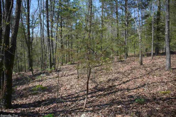 9 Ac Brownsville Rd., Greers Ferry, AR 72067 Photo 2
