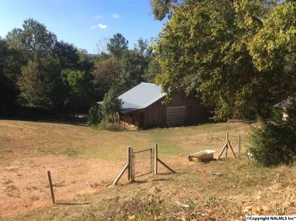 4529 E. Old Hwy. 278, Hokes Bluff, AL 35903 Photo 22
