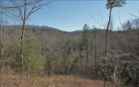 Home for sale: Lot 2 Fox Springs Trl, Hayesville, NC 28904