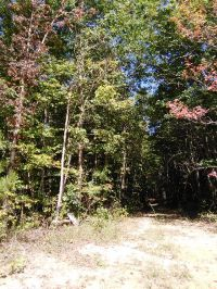 Home for sale: Lot 28 Parkstown Rd., Wilder, TN 38589