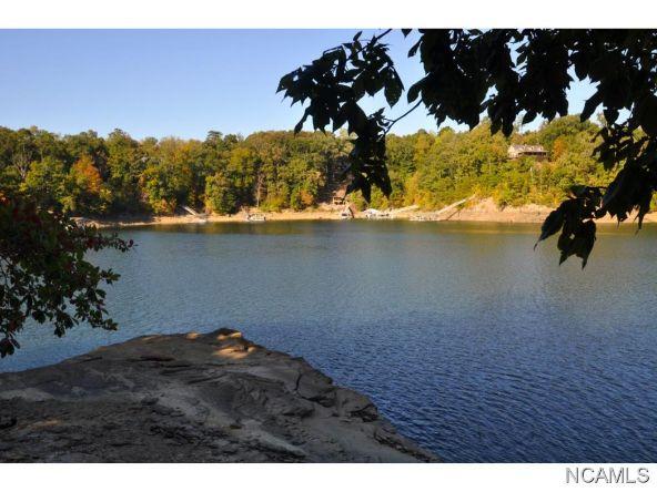 356 Co Rd. 378, Crane Hill, AL 35053 Photo 18