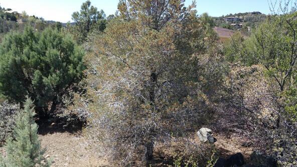 403 Sunny Cove, Prescott, AZ 86303 Photo 21
