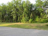Home for sale: 0 Hwy. 119, Pembroke, GA 31321