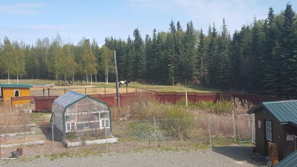 45350 Dividend St., Homer, AK 99611 Photo 95