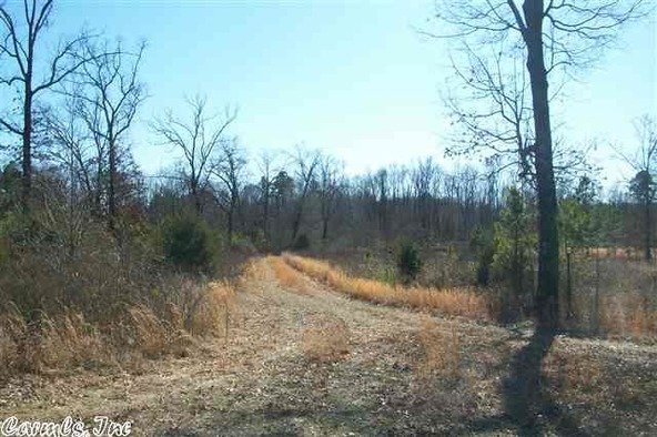 125 Stark Rd., Greers Ferry, AR 72067 Photo 22