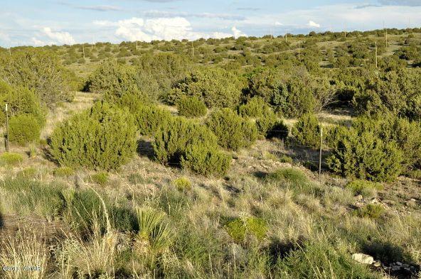 199.54 Acres, Concho, AZ 85924 Photo 11