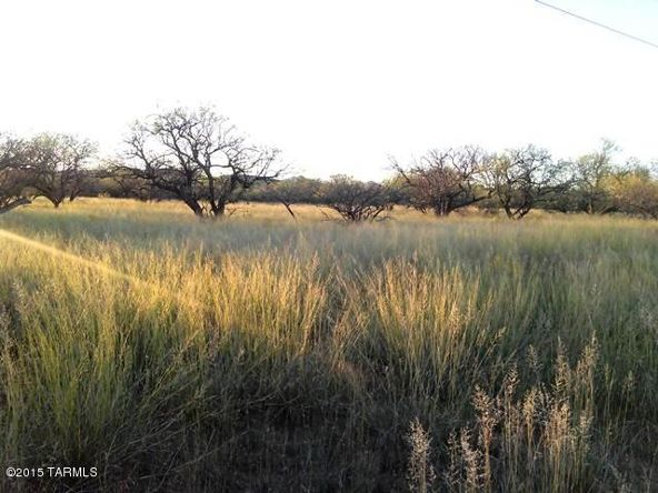 16005 Ranger Rd., Arivaca, AZ 85601 Photo 1