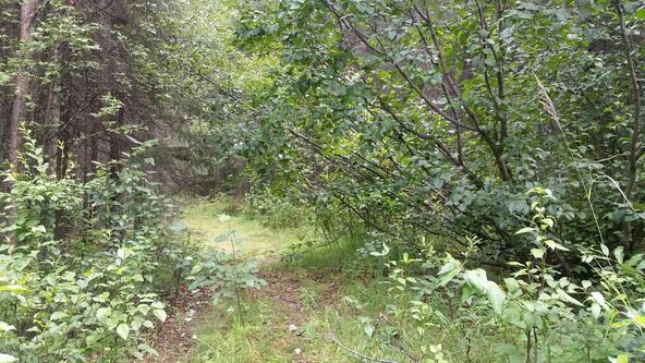 14018 W. Cheshire Cir., Houston, AK 99694 Photo 3