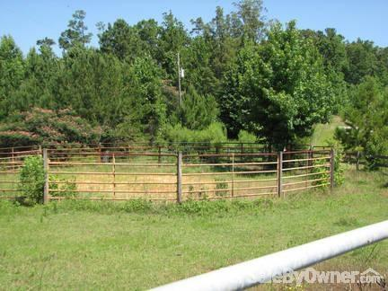 4770 Old Buttermilk Rd., Cottondale, AL 35453 Photo 9