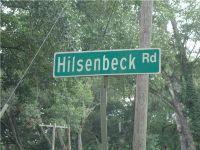 Home for sale: 3787 Hilsenbeck Rd., Pierson, FL 32180