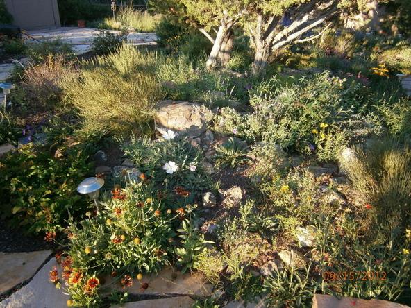 10922 S. High Mesa Trail, Williams, AZ 86046 Photo 51