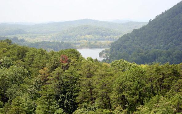 Mount Pleasant Rd., Vonore, TN 37885 Photo 21