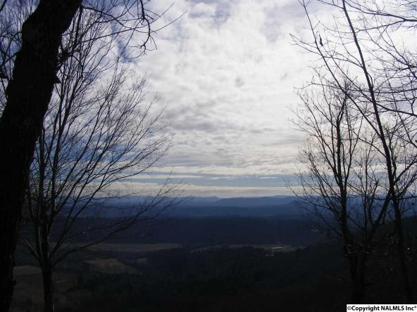 9416 County Rd. 103, Mentone, AL 35984 Photo 10