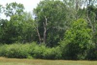 Home for sale: 00 Pleasant Grove Rd., Ashford, AL 36312