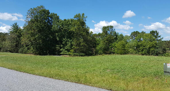 Lot27 Jewell Mason, Blairsville, GA 30512 Photo 16
