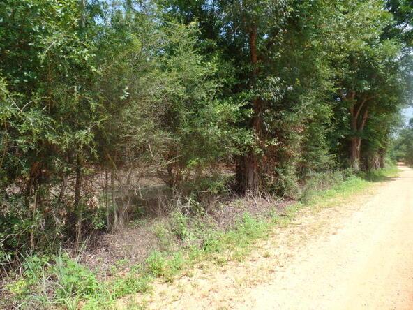 195 Shiloh Rd., Atmore, AL 36502 Photo 22