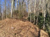 Home for sale: Lot # 43 Triple Creek Dr., Clyde, NC 28721