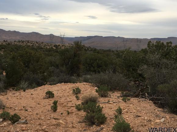 7340 N. Frerichs Ranch Rd., Hackberry, AZ 86411 Photo 11