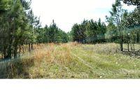 Home for sale: 55480 Cobb Ln., Stockton, AL 36579