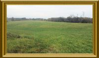Home for sale: 4.06 Acres Ky Hwy. 14, Verona Mudlick Rd., Verona, KY 41092