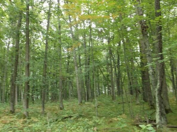 Lot7&Out7 Hydro Ct., Crivitz, WI 54114 Photo 11