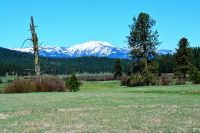 Home for sale: Tbd Hwy. 95, New Meadows, ID 83638