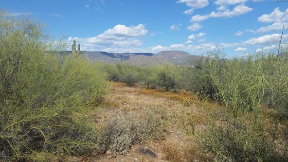 45### N. 8th Pl., New River, AZ 85087 Photo 8