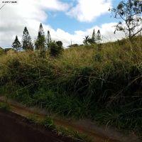 Home for sale: D17 Mahiki, Maunaloa, HI 96770