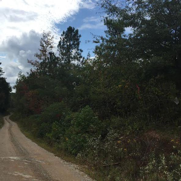 621 County Rd. 444, Fruithurst, AL 36262 Photo 6