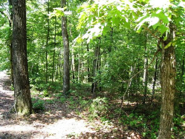 Lot 21 Toccoa Preserve, Blue Ridge, GA 30513 Photo 7