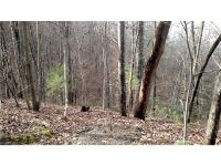 Home for sale: 9999 Off Mountain Page Rd., Saluda, NC 28773