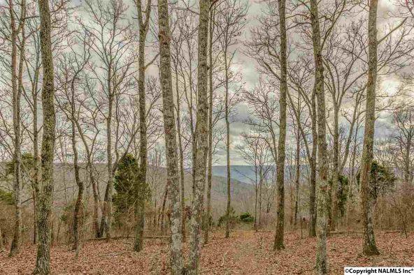 9 South Bluff Trail, Huntsville, AL 35803 Photo 17