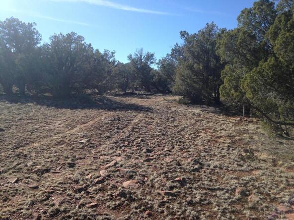 225 Rocky Rd., Ash Fork, AZ 86320 Photo 1