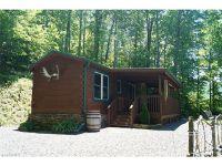 Home for sale: 310 Dancing Leaf Rd., Bakersville, NC 28705