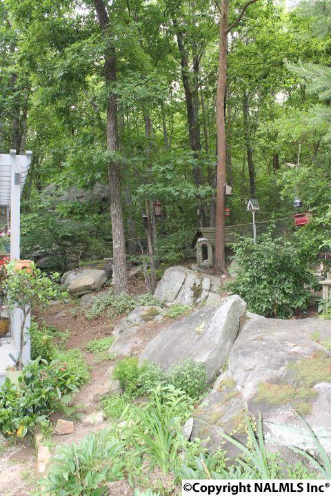 21432 Scenic Dr., Mentone, AL 35984 Photo 26