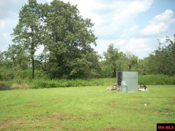 20027 Hwy. 62/412 West, Gepp, AR 72538 Photo 3