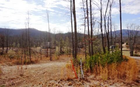 Lt105 Asheland Cove, Young Harris, GA 30582 Photo 9