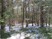 Home for sale: Lot 65 Snowbird Ln., Newry, ME 04261