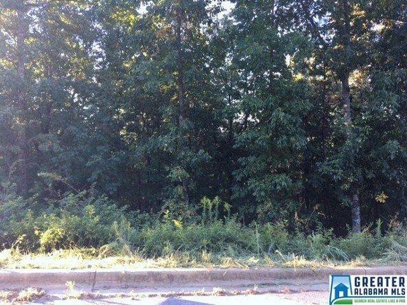380 Gray Fox Rd., Springville, AL 35146 Photo 12