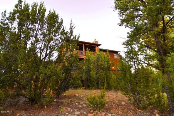 2946 Lodgepole, Overgaard, AZ 85933 Photo 52