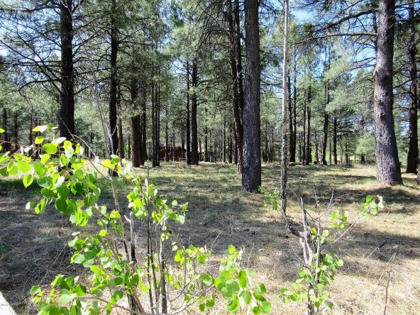 4651 Buck Springs Rd., Pinetop, AZ 85935 Photo 27