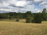 Home for sale: 0 Reed Creek Rd., Hurt, VA 24563