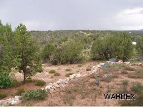 33325 W. Mesa Rd., Seligman, AZ 86337 Photo 4