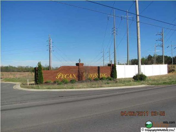 65 Parkview Dr., Albertville, AL 35950 Photo 2