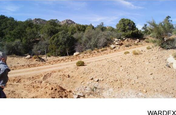 6731 N. Trap Springs Rd., Hackberry, AZ 86411 Photo 1