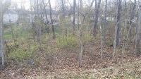 Home for sale: Lot 182 South Cloverdale Ln., Battlefield, MO 65619