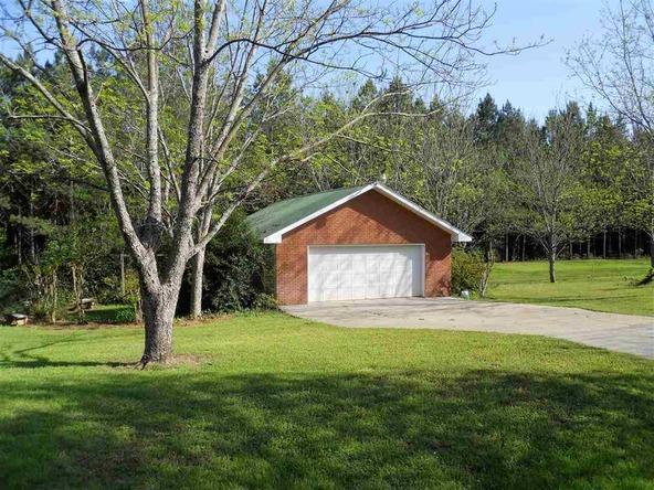 3530 County Rd. 643, Chancellor, AL 36316 Photo 26