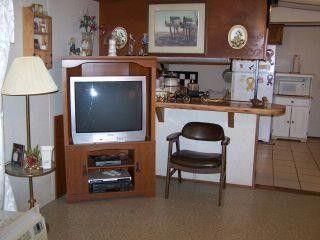 11 Swan Loop, Buchanan, TN 38222 Photo 7