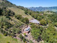 Home for sale: 250 Calle de Los Agrinemsors, Carmel Valley, CA 93924